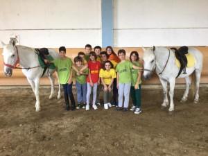 2015 Cavallo 1