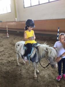 2015 Cavallo 4