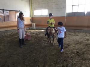 2015 Cavallo 5