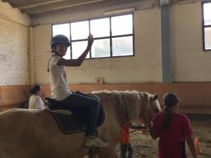 2015 Cavallo 6