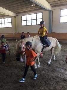 2015 Cavallo 7